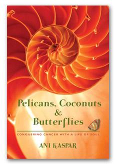 Pelicans, Coconuts & Butterflies by Ani Kaspar